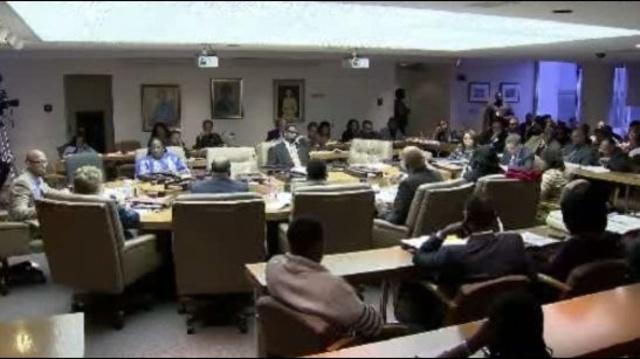 Detroit City Council 3292012