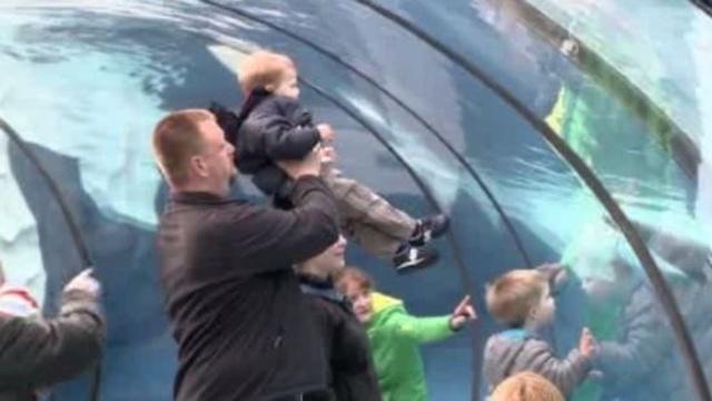 Detroit Zoo water tunnel