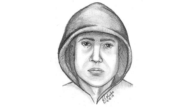Ypsilanti beating suspect sketch
