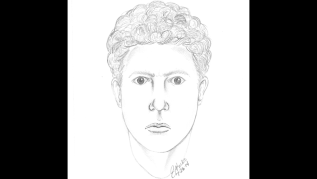 Digital sketch of person of interest in Armada murder case