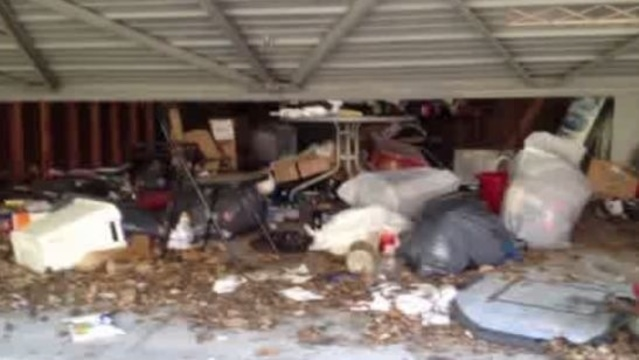 Allen Park rats foreclosed home blamed 2