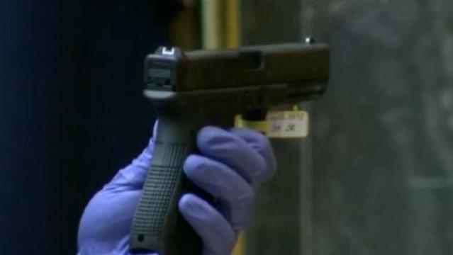 Sandra Layne gun