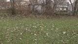 Vacant Detroit lots being transformed for outdoor education