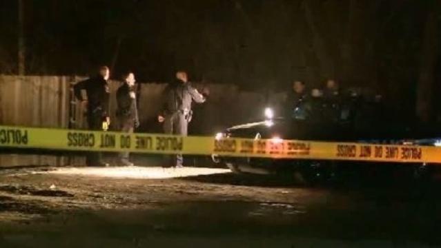 Van Buren Township homicide