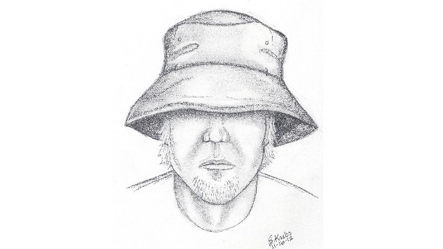 Armada Township sketch attempted abduction