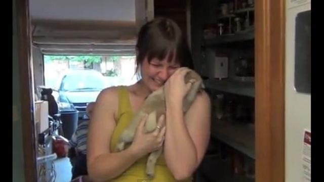 Boyfriend-surprises-girlfriend-with-pug-pup.jpg_19023044