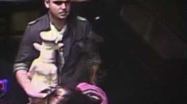 Detroit pig statue thief