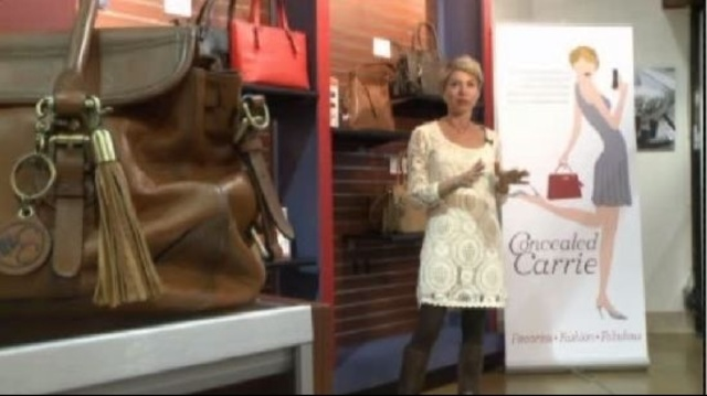 Handgun handbag called Concealed Carrie