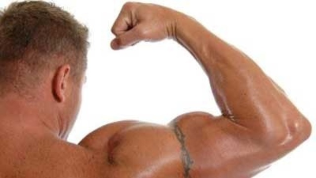 Oiled bodybuilder, muscles, muscular man