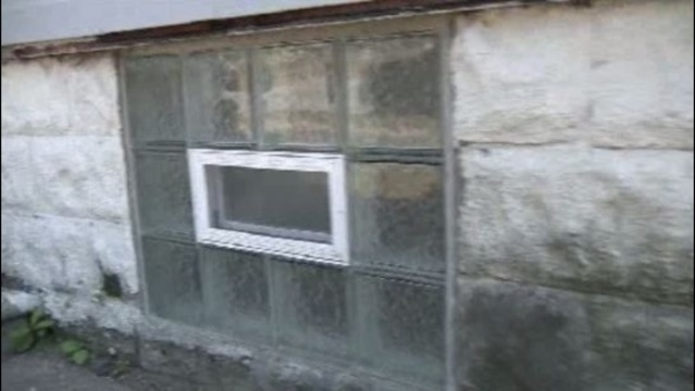 Port Huron captivity basement windows
