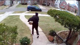 Detroit package thief turns self in after seeing himself on Local 4