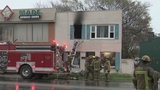 Dogs, cats rescued from burning Eastpointe apartment