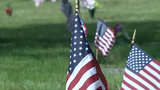 Flags placed on veterans' graves at Oakview Cemetery in Royal Oak