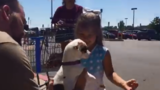 Pet adoption event held in Chesterfield Twp.