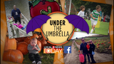 Win a Local 4 Today umbrella!