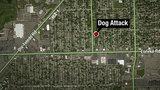 Southgate neighborhood on high alert after pit bull attacks woman, kills dog