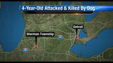 4-year-old attacked and killed by family dog
