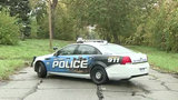 Study: Michigan police officers most overworked in US