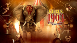 Circus 1903 Contest