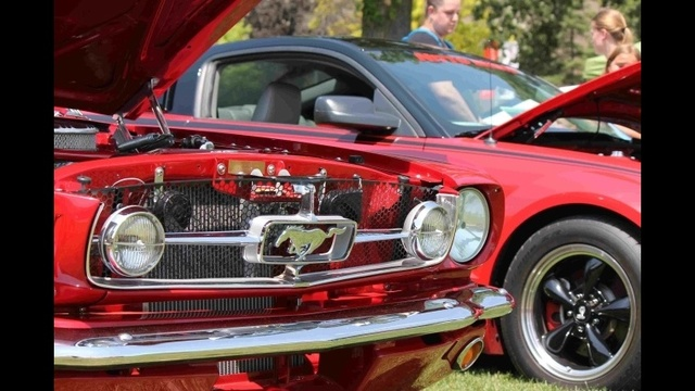 Ford Mustang_20677726