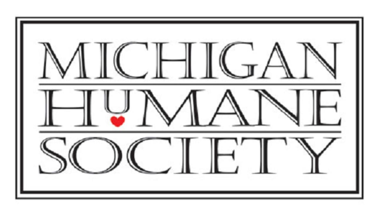 Detroit Humane Society Dogs For Adoption