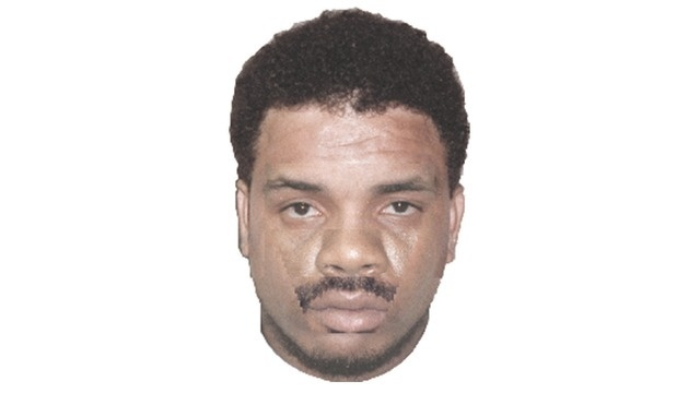 Troy murder suspect sketch_24485868