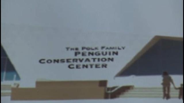 Polk Family penguin center_21995470