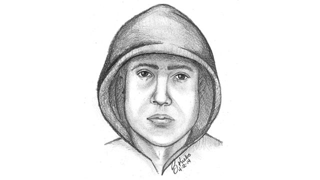 Ypsilanti beating suspect sketch