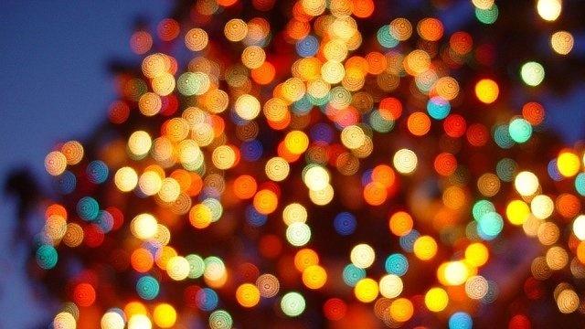 Christmas lights_17723176
