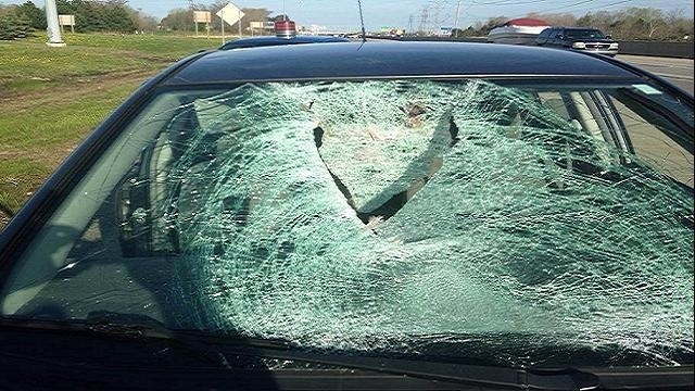Smashed winshield from goose collision_25922814