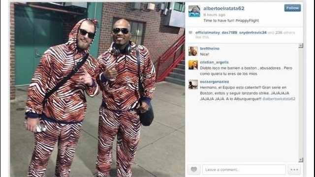 Tigers in Zubaz