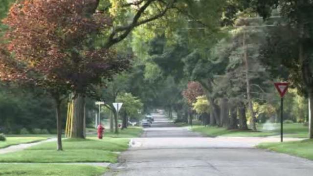 Trees line Huntington Woods street 1_27364880