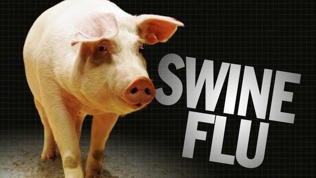 swine-Flu-Image-16-x-9---19299838.jpg_2422652