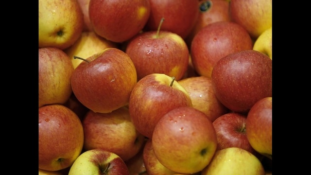 Apples.jpg_16213342
