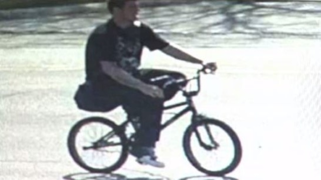 Brownstown Township bike bandit 2