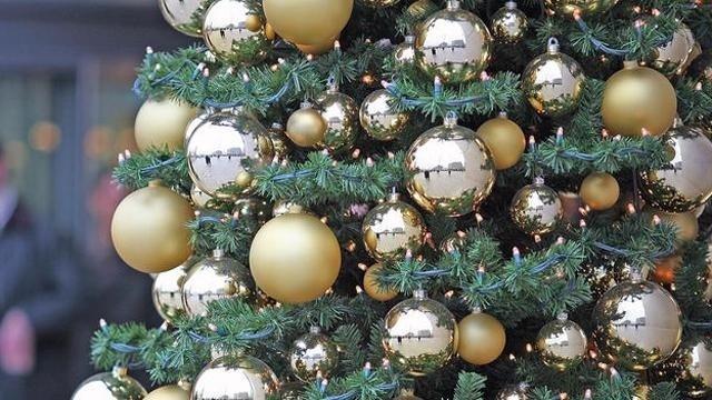 Christmas-Tree-Generic-16x9---18362730