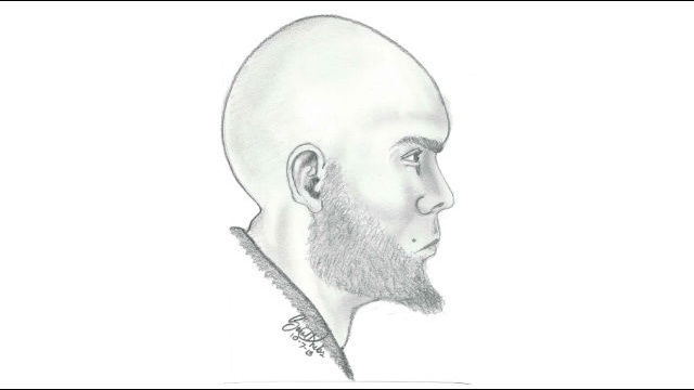 Detroit-police-release-sketch-of-alleged-abducter.jpg_22335744