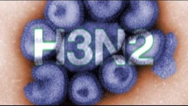 H3N2 flu virus graphic_18044798