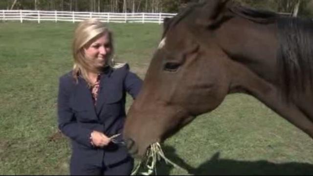 Lauren Podell feeds horse_16920072