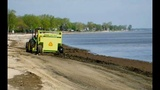 14 Michigan beaches cited for high bacteria levels