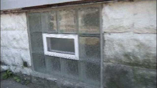 Port Huron captivity basement windows