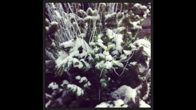 Weather-patio-snow.jpg_18398170