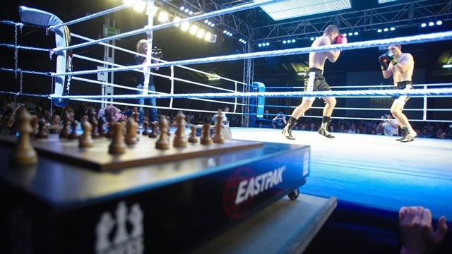 chess boxing match_4842822