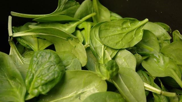 spinach vegetable leaves_8508598