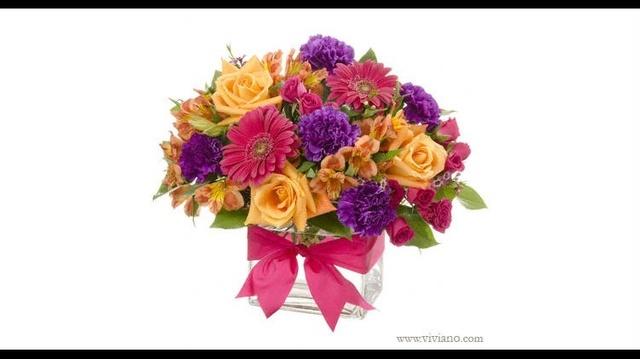 Viviano Flower Shop_17245598