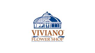 Win a $100 Viviano Gift Card!