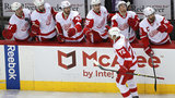 Red Wings' 25-season playoff streak officially ends