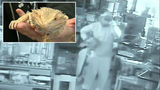 Thousands of dollars worth of reptiles stolen from exotic pet shop in Livonia