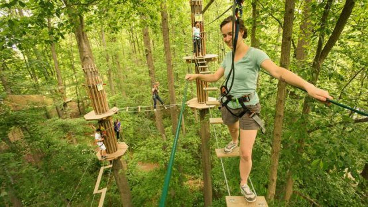 Go Ape Adventure Park Opens At Stony Creek Metropark