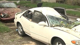 Cars destroyed by tree knocked down by wind on Detroit's west side